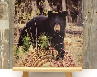"""SALE 25% OFF ~ Black Bear Cub >>> Photo transfer and silkscreen on wood cradle >>> 10"""" x 10"""" with 2"""" cradle"""