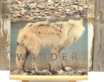 "SALE 25% OFF ~ Wander ~ Photo Transfer on Birch Wood CRADLE 10"" x 10"""