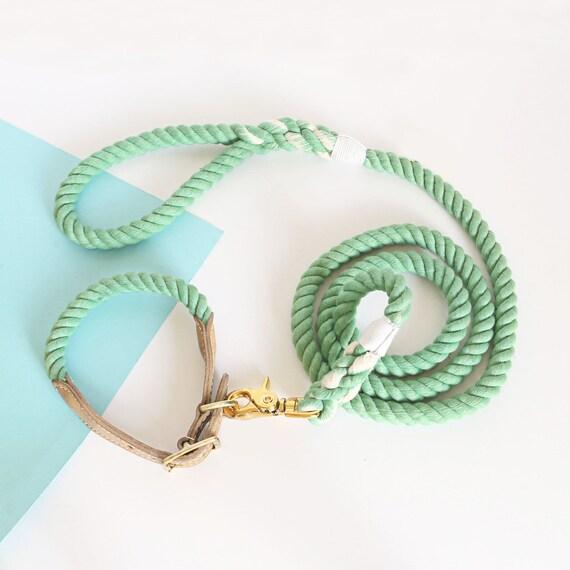 Collier de chien et une laisse - collier de chien en cuir et collier de chien matériel laisse - collier pour chien vert Set - en laiton doré