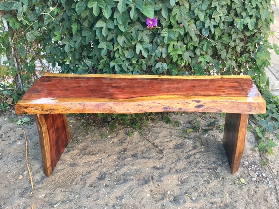 Superb Live Edge Slab Bench Coffee Table Evergreenethics Interior Chair Design Evergreenethicsorg