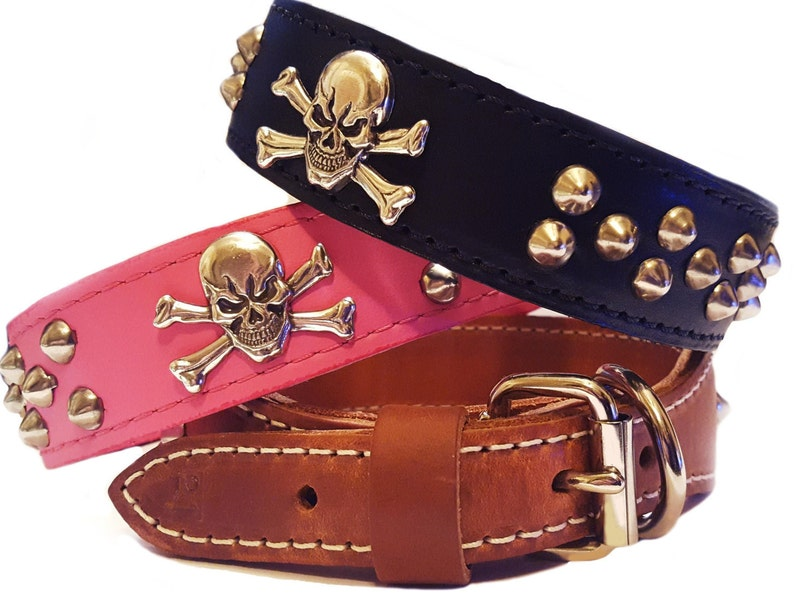 Skull and Crossbones Leather Dog Collar with Studs Tapered image 0