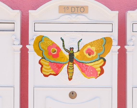 Moth sticker, butterfly sticker, moth decal, butterfly car decal, mailbox decal, tumbler decal, colorful butterfly, butterfly stickers, moth