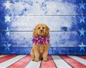 ALL IN ONE Photography Backdrop + Floordrop:  Patriotic, usa, Flag, Red White & Blue, Stars and Stripes, Americana, 4th of July, Vinyl, Poly
