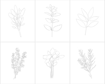 Herb Template Instant Download