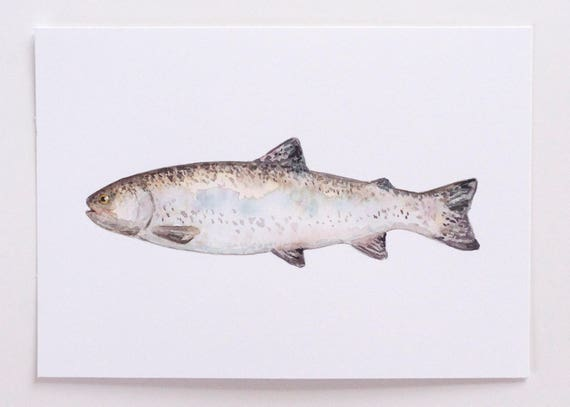 Watercolor Fish Print