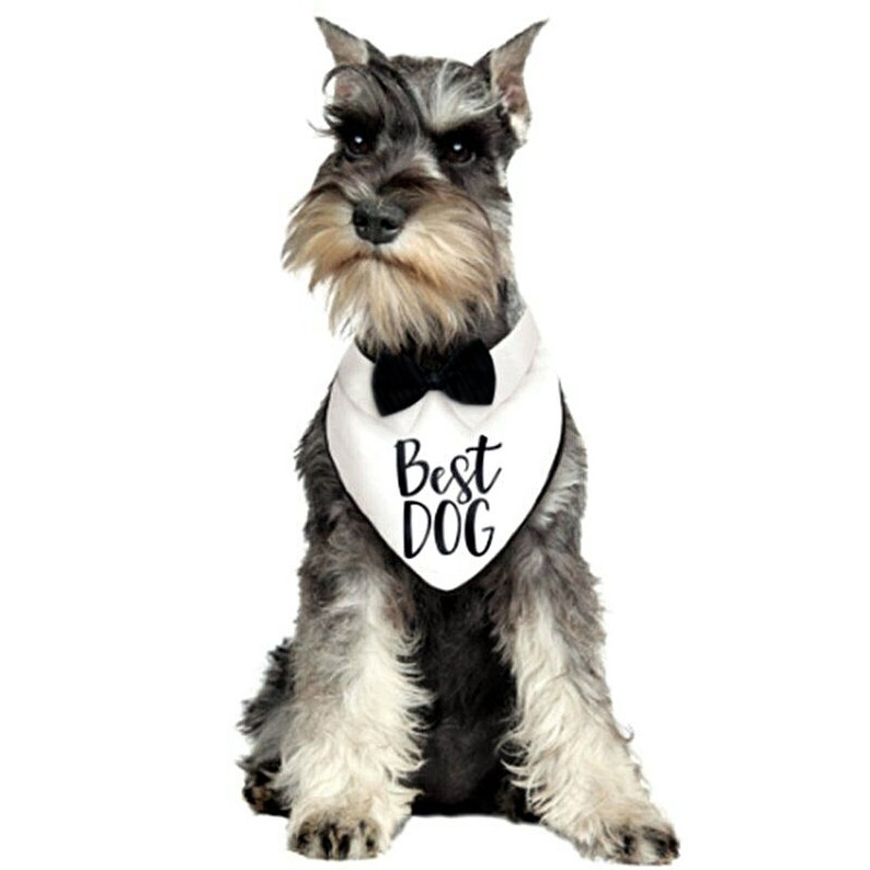 Best Dog Bandana Bow Tie Collar Tuxedo Wedding Clothes Costume Outfit Pet