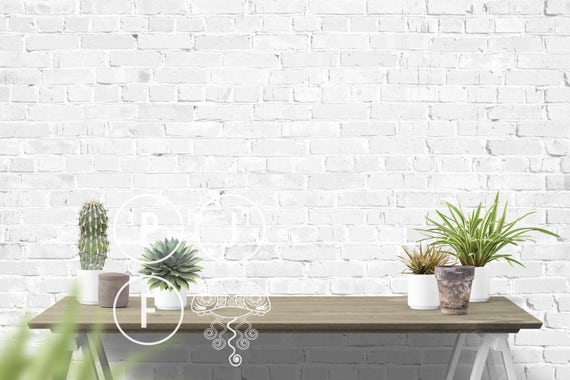 White Wall Mockup Plants Gardening Background Outdoor Wall Etsy