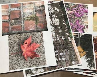 Welcome Fall Image  Bundle