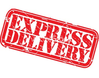 Express delivery. Shipping by EMS.