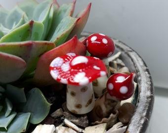 Mini Glass Toadstool for succulent /cacti / fairy garden