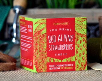 SALE!!! - ECO Grow Your Own Red Strawberry Plant Kit