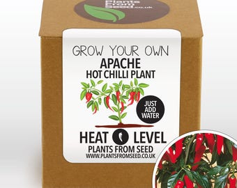 CHRISTMAS SALE!!! - Grow Your Own Apache Chilli Plant Kit
