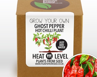 SALE!!! - Grow Your Own Ghost Pepper Chilli Plant Kit