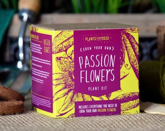 CHRISTMAS SALE!!! - ECO Grow Your Own Passion Flowers Plant Kit