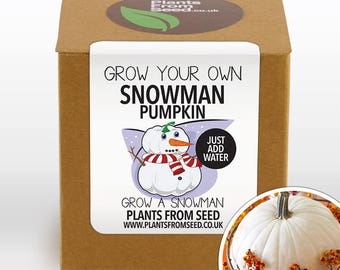 CHRISTMAS SALE!!! - Grow Your Own Snowman White Pumpkin Plant Kit