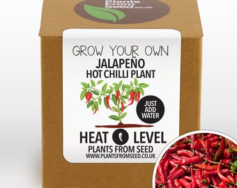 CHRISTMAS SALE!!! - Grow Your Own Jalapeño Chilli Plant Kit