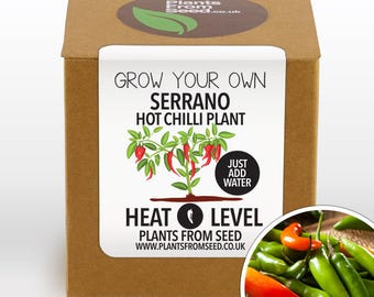 CHRISTMAS SALE!!! - Grow Your Own Serrano Chilli Plant Kit
