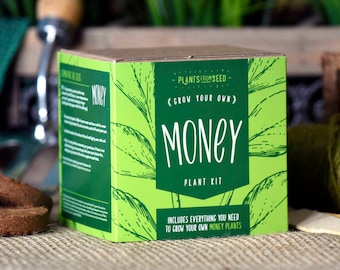 CHRISTMAS SALE!!! - ECO Grow Your Own Money Plant Kit