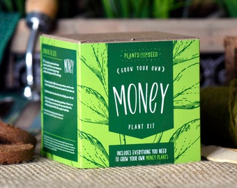 SALE!!! - ECO Grow Your Own Money Plant Kit