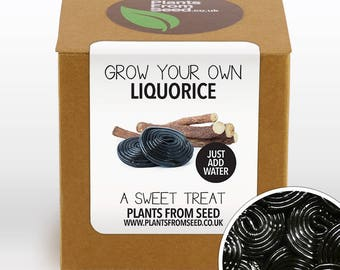 CHRISTMAS SALE!!! - Grow Your Own Sweet Liquorice Plant Kit