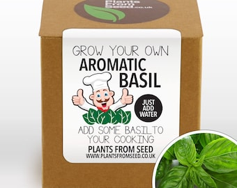 CHRISTMAS SALE!!! - Grow Your Own Basil Plant Kit