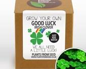 CHRISTMAS SALE - Grow Your Own Lucky Clover Plant Kit