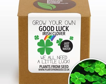 CHRISTMAS SALE!!! - Grow Your Own Lucky Clover Plant Kit