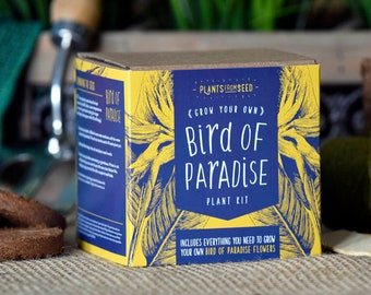 CHRISTMAS SALE!!! - ECO Grow Your Own Bird Of Paradise Plant Kit