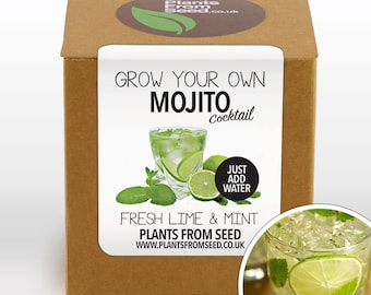 SALE!!! - Grow Your Own Mojito Cocktail Plant Kit