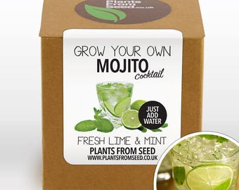 CHRISTMAS SALE!!! - Grow Your Own Mojito Cocktail Plant Kit