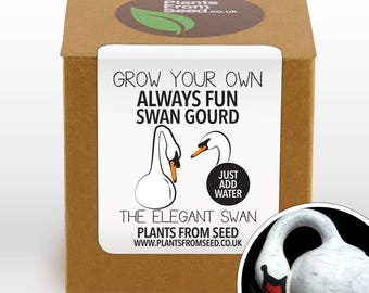 CHRISTMAS SALE!!! - Grow Your Own Swan Gourd Plant Kit