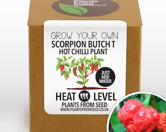 SALE!!! - Grow Your Own Scorpion Butch T Chilli Plant Kit