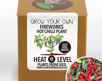 CHRISTMAS SALE!!! - Grow Your Own Fireworks Chilli Pepper Plant Kit