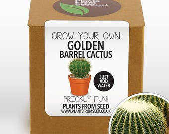 CHRISTMAS SALE!!! - Grow Your Own Golden Barrel Cactus Plant Kit
