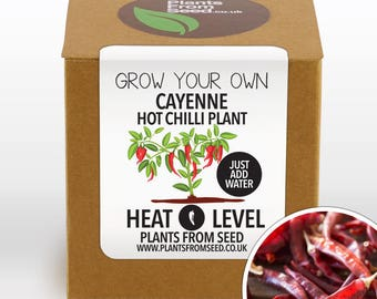 CHRISTMAS SALE!!! - Grow Your Own Cayenne Pepper Chilli Plant Kit