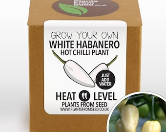 SALE!!! - Grow Your Own White Habanero Chilli Plant Kit