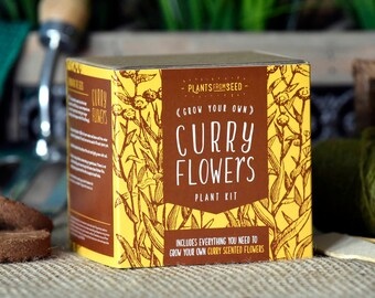 SALE!!! - ECO Grow Your Own Curry Scented Flowers Plant Kit