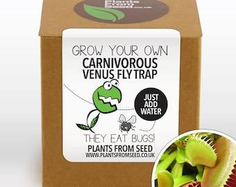 Plant Grow Kits