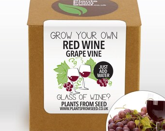 SALE!!! - Grow Your Own Red Grape Vine Kit