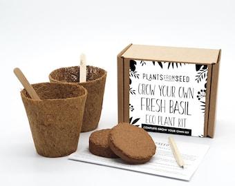 Eco Grow Your Own Basil Plant Kit