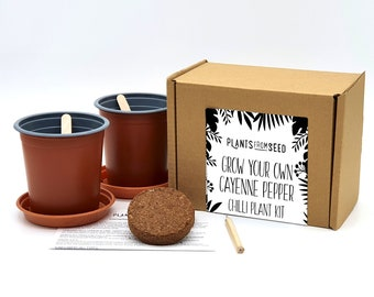 Grow Your Own Cayenne Pepper Chilli Plant Kit