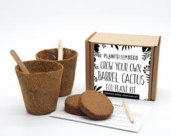 Eco Grow Your Own Golden Barrel Cactus Plant Kit