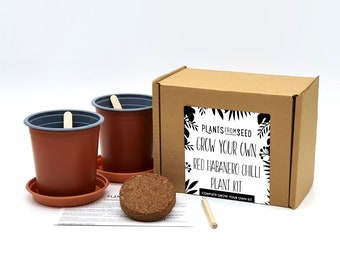 Grow Your Own Red Habanero Chilli Plant Kit