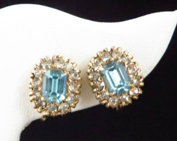 Vargas Rhinestone Earrings - Vintage Blue Rhinestone Screwback Earrings, Gift idea, Gift Box