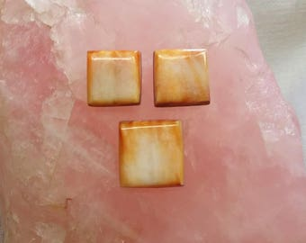 Light Orange Spiny Oyster Shell Cabochon Square Set/ backed