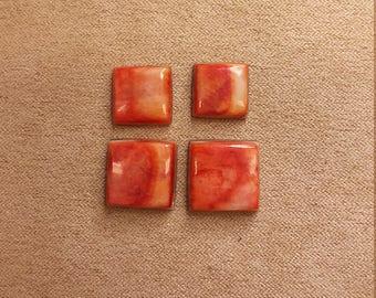 Orange Spiny Oyster Shell Square Cabochon Set/ backed/