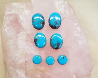 Blue Bisbee Turquoise Small Ovals & Circles Cabochons/ Set of 7/ backed