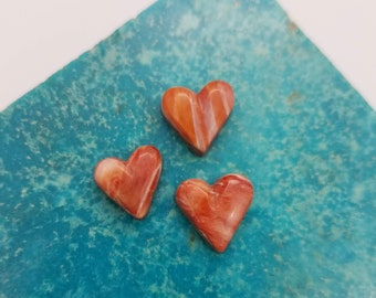 Red and White Spiny Oyster Shell Small Heart Cabochon Trio/ backed