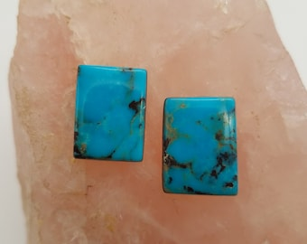 Deep Blue Bisbee Turquoise Medium Rectangle Cabochon Pair/ backed