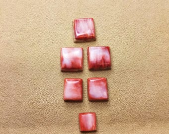Red and White Square Spiny Oyster Shell Cabochon Set/ backed